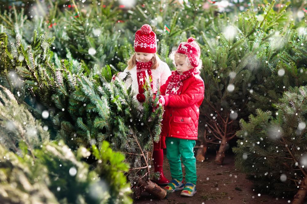 Lasting Christmas Memories For Toddlers